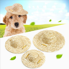 Cat Dog Straw Hat