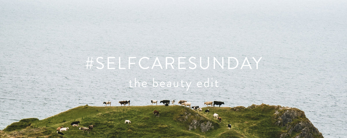 Cows on top of a coastal hill. White text reading #selfcaresunday, the beauty edit.