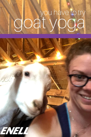 You have to try goat yoga!