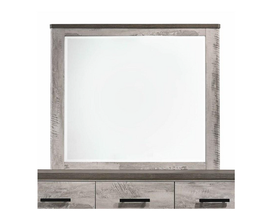 Millers Cove Mirror - Canales Furniture