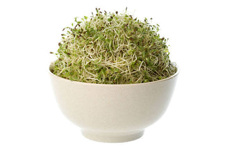 image for Alfalfa in Pet Food