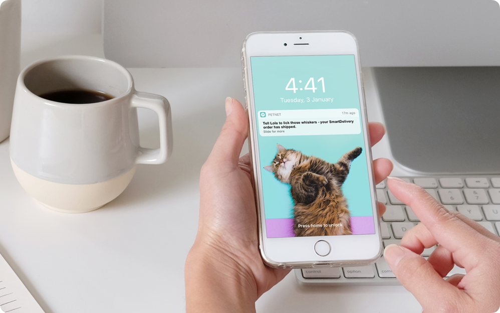 Get notified when  your pet's been fed.