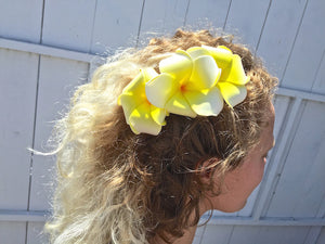 Hawaiian three flower hair clip