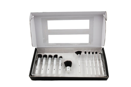 FREE SHIPPING:: 12 Piece Brush Set