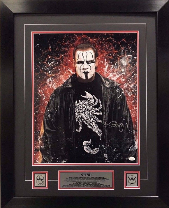 WWE Hall of Fame Superstar STING Signed 16x20 Framed 22x20 Authenticated
