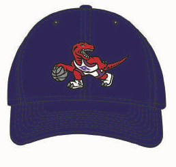 Toronto Raptors Team Ground Purple Hat Retro Logo NBA Basketball Mitchell & Ness Flex Fit Cap - Multiple Sizes - Bleacher Bum Collectibles, Toronto Blue Jays, NHL , MLB, Toronto Maple Leafs, Hat, Cap, Jersey, Hoodie, T Shirt, NFL, NBA, Toronto Raptors
