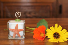Natural Starfish Design, Coconut Soy Square Votive Candle
