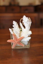 Sold - Natural Coral & Starfish Design, Coconut Soy Square Votive Candle, Cucumber Mint Scent