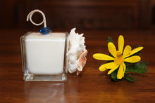 Sold - Natural Coral & Starfish Design, Coconut Soy Square Votive Candle, Pear Pomegranate Scent