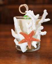 Sold - Coral & Starfish Design, Coconut Soy Votive Candle, Cucumber Mint Scent