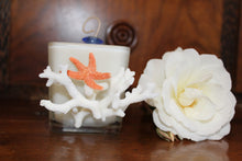 Sold - Natural Coral & Starfish Design, Coconut Soy Square Candle, Pear Pomegranate Scent