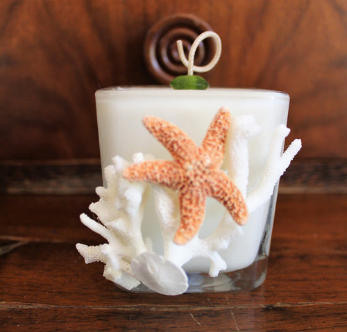 Sold - Natural Coral & Starfish Design, Coconut Soy Square Candle, Cucumber Mint Scent