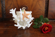 Sold - Natural Coral & Starfish Design, Coconut Soy Round Candle, Cucumber Mint Scent