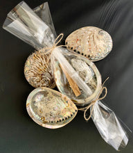 Smudge Kit with Natural White Midae Abalone Shell