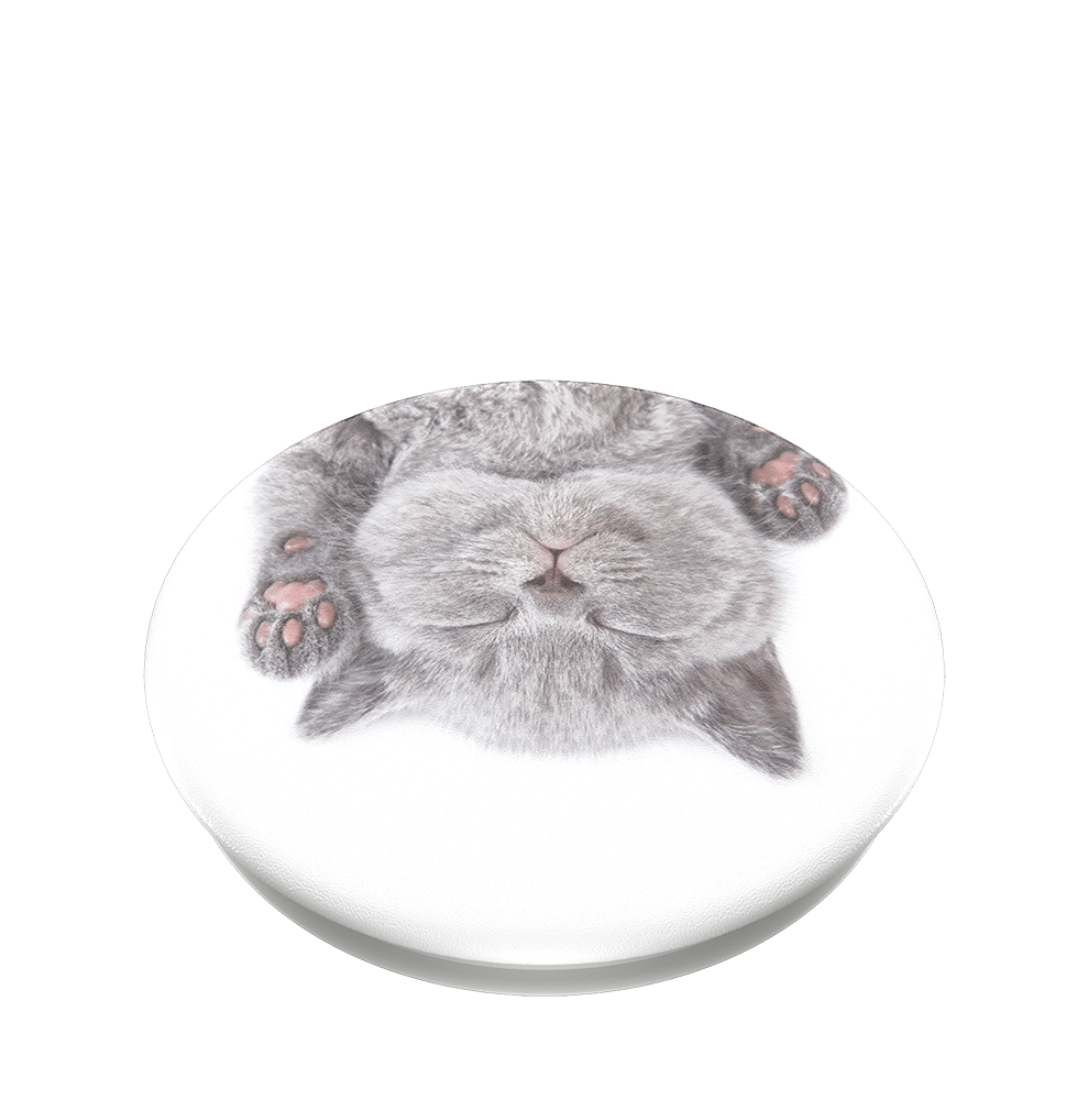 Cat Nap, PopSockets