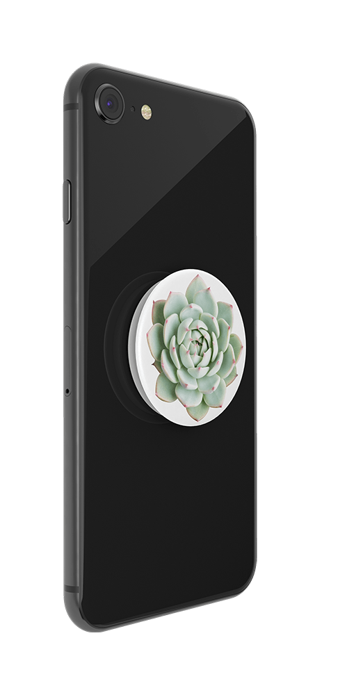 You Succulent, PopSockets