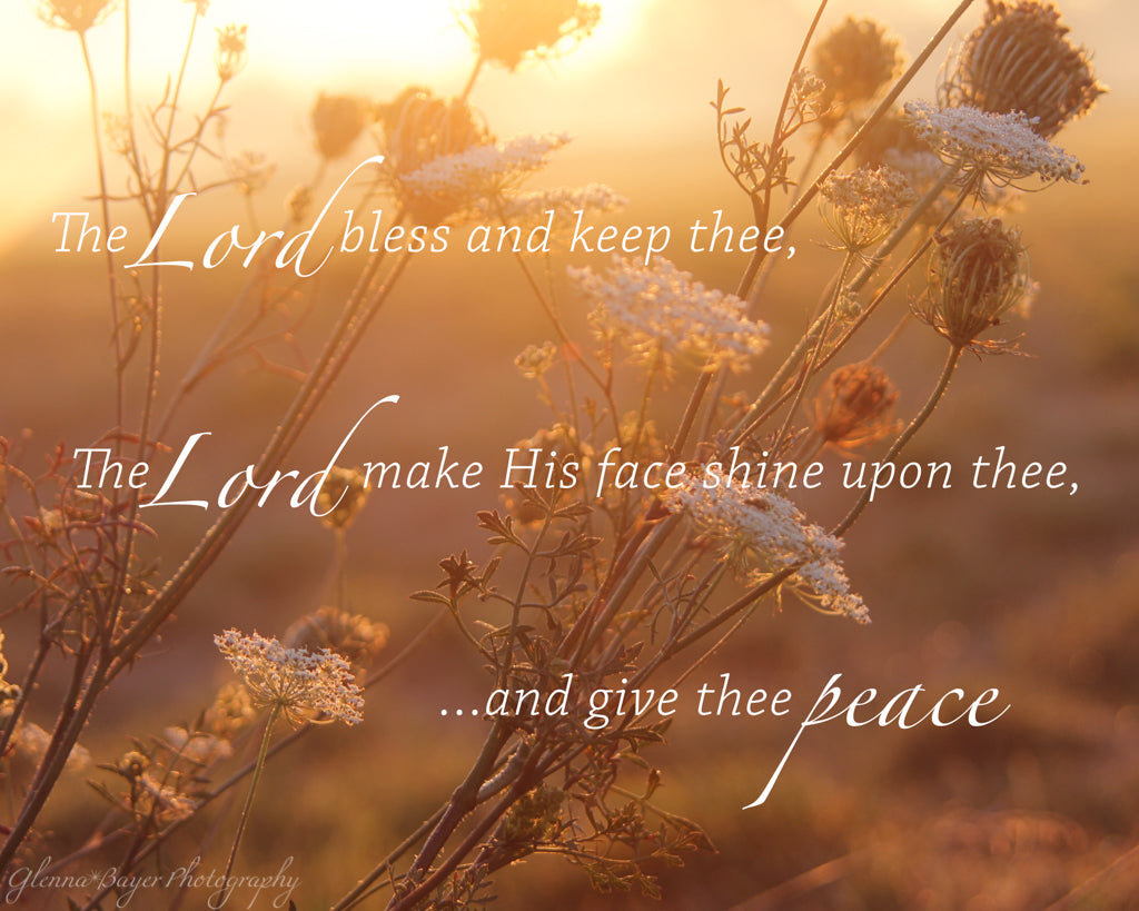 Autumn foliage in sunset glow with scripture verse