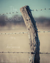 Kansas Post and Barbwire, Bible Verse, Brown, Blue, Fence