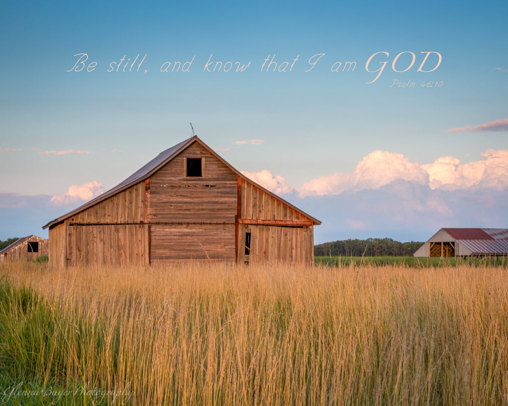 Old wooden barn and wheat field at evening in Kanas with scripture verse