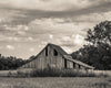 Kansas Barn, Sepia, Old, Clouds, Grass, Trees