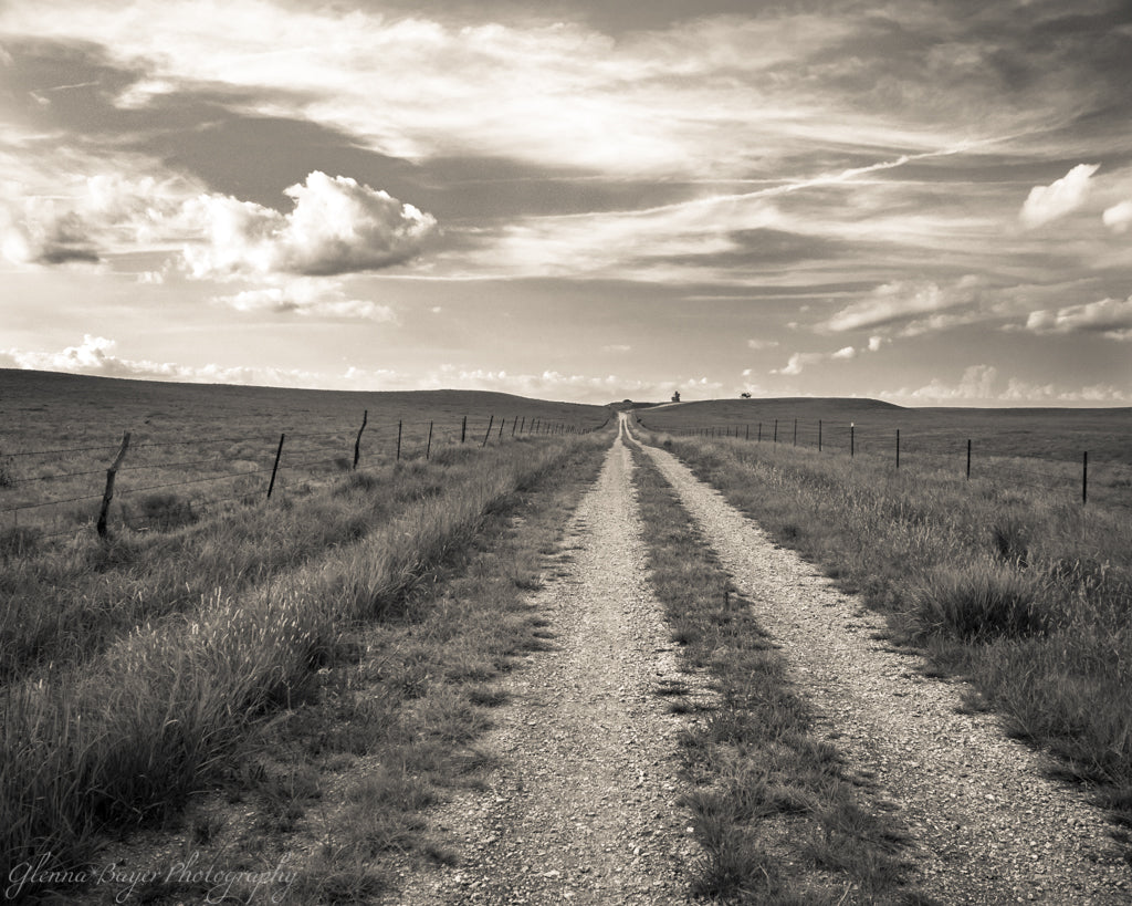 Gravel road through grassy landscape in Kansas