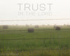 "Hay bales in a green field with barbed wire fence on a foggy morning with words ""Trust in the Lord"""