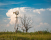 Kansas Windmill and Tree, Clouds, Sky, Grass, Green, Blue, White, Evening