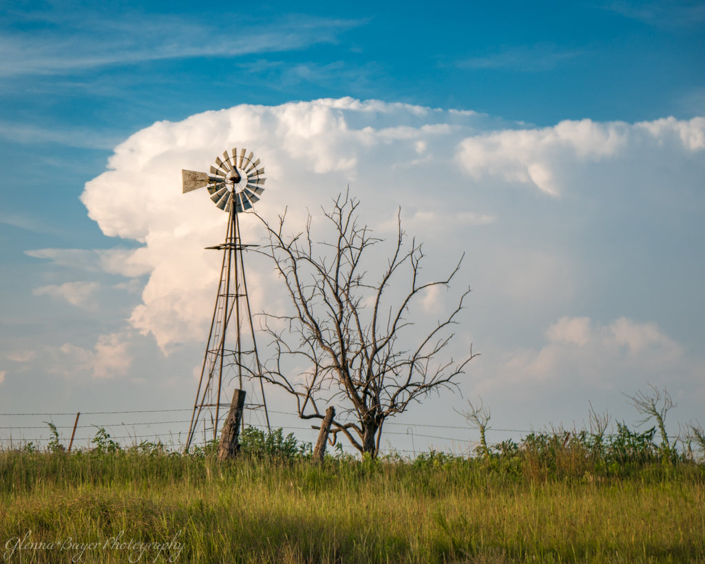 Windmill and tree with huge storm clouds in Kansas
