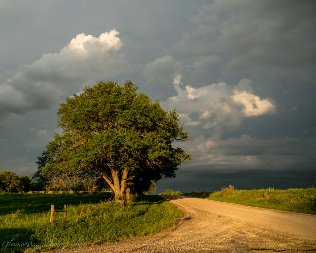 Landscape in evening's golden light with dark storm clouds in Kansas