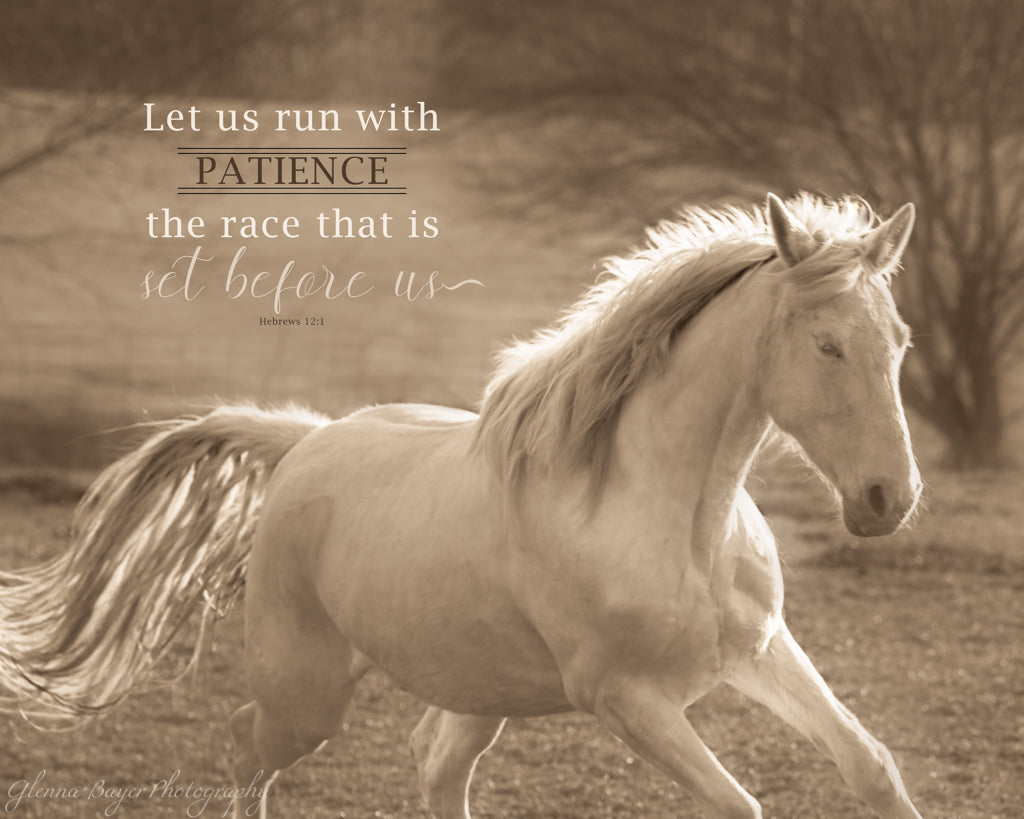 White horse galloping through field with scripture verse