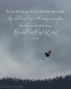 Soaring Eagle, Wings, Trees, Blue, Bible Verse