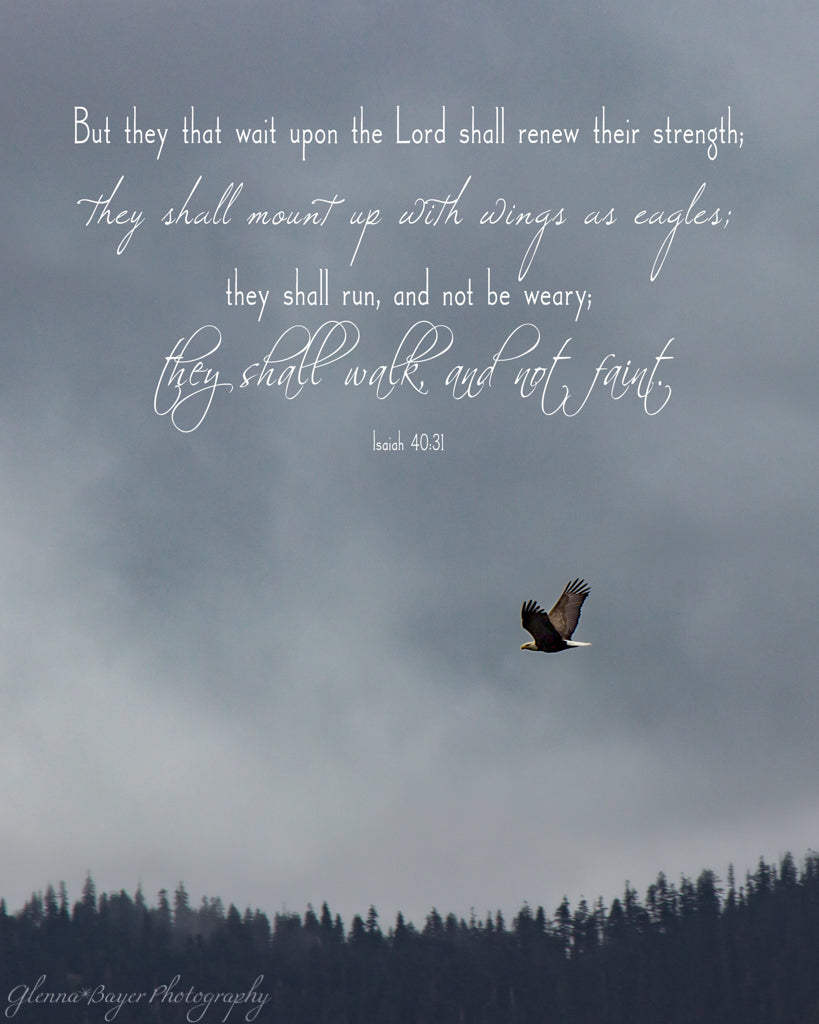 Soaring Eagle over trees on cloudy day with scripture verse