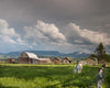 Grand Teton Barn and Horses, Old, Pasture, Grass, Green, Blue, Mountains, Clouds, Gray
