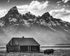 Log Cabin and Bison in Tetons, Snowy Mountain, Black and White