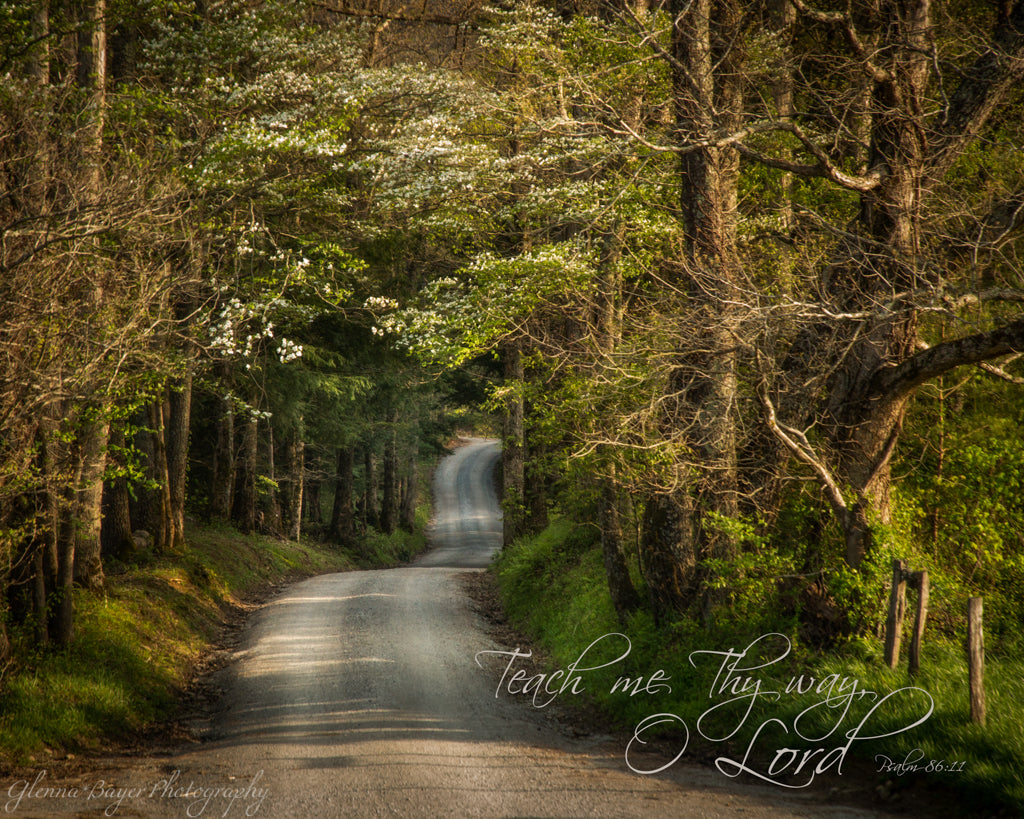Gravel road through the Smoky Mountains on spring day with scripture verse