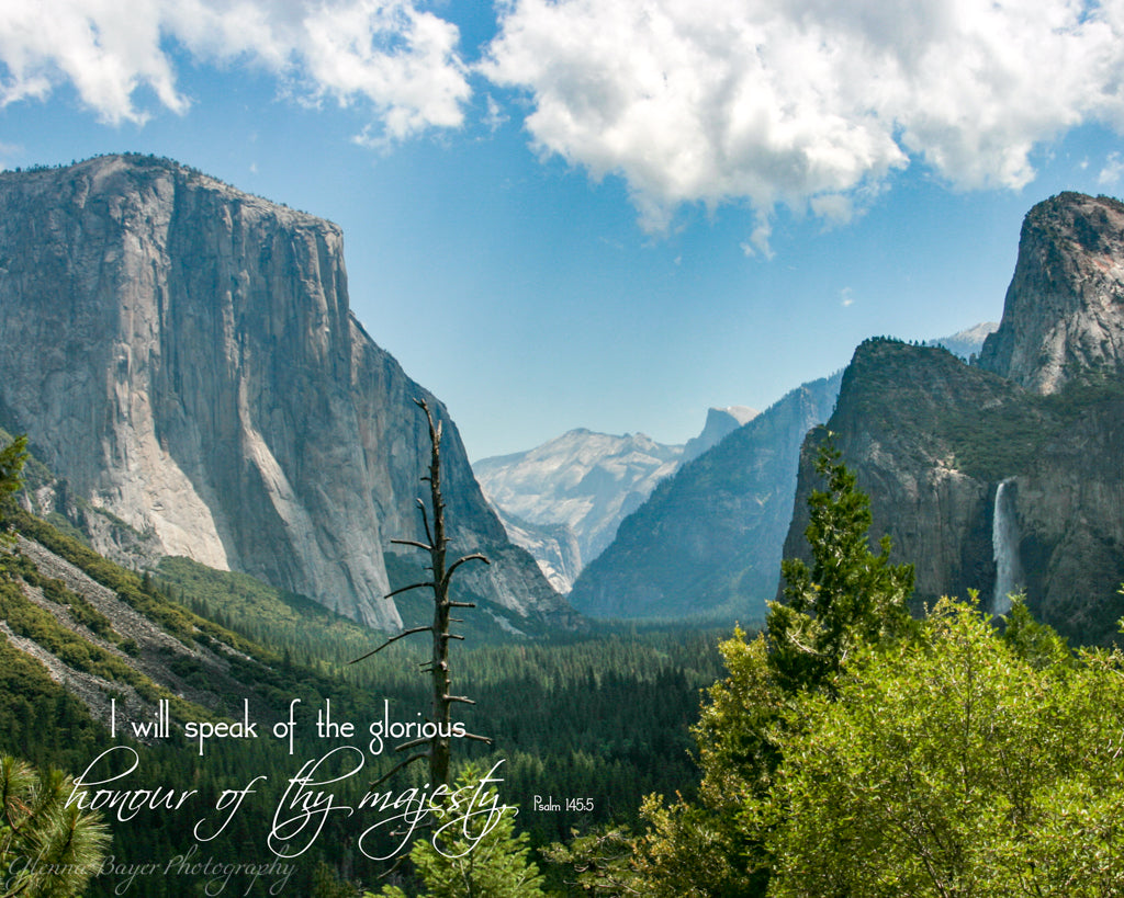Yosemite Valley (0412-1)