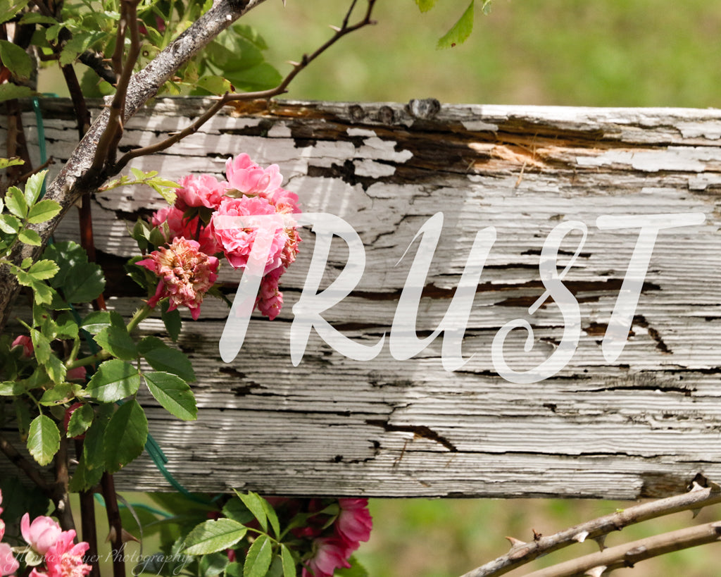 "Rustic wood fence and pink flowers with word ""Trust"""