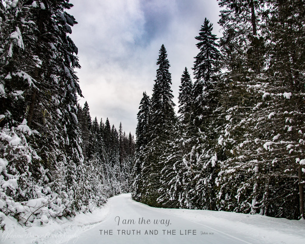 Snowy road through conifer trees in Idaho with scripture verse