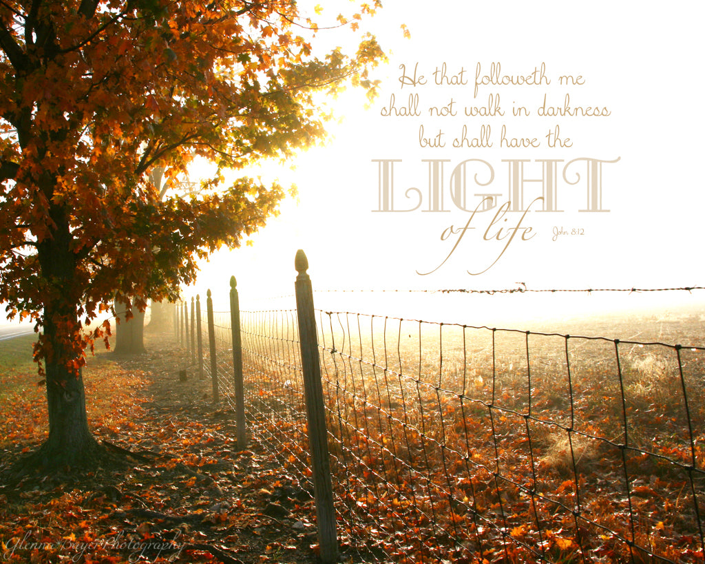 Foggy autumn morning with tree and fence row and scripture verse