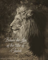 Profile of a lion with scripture verse
