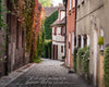 Schwabach Germany Street Scene, Plants, Green, Orange, Scripture Verse