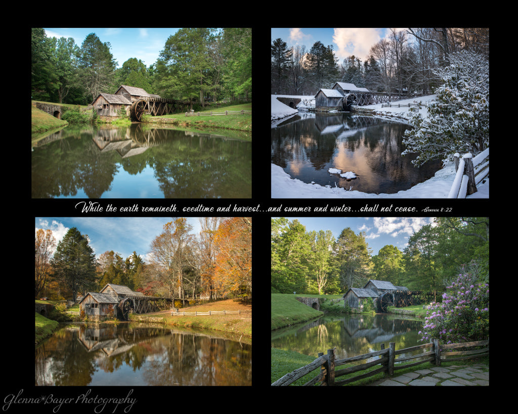 Four photo collage of Mabry Mill in four Seasons with scripture verse