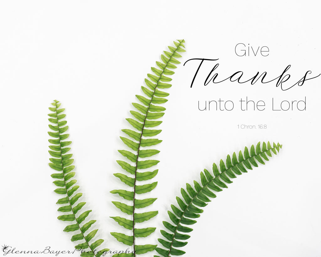 Three fern fronds with scripture verse