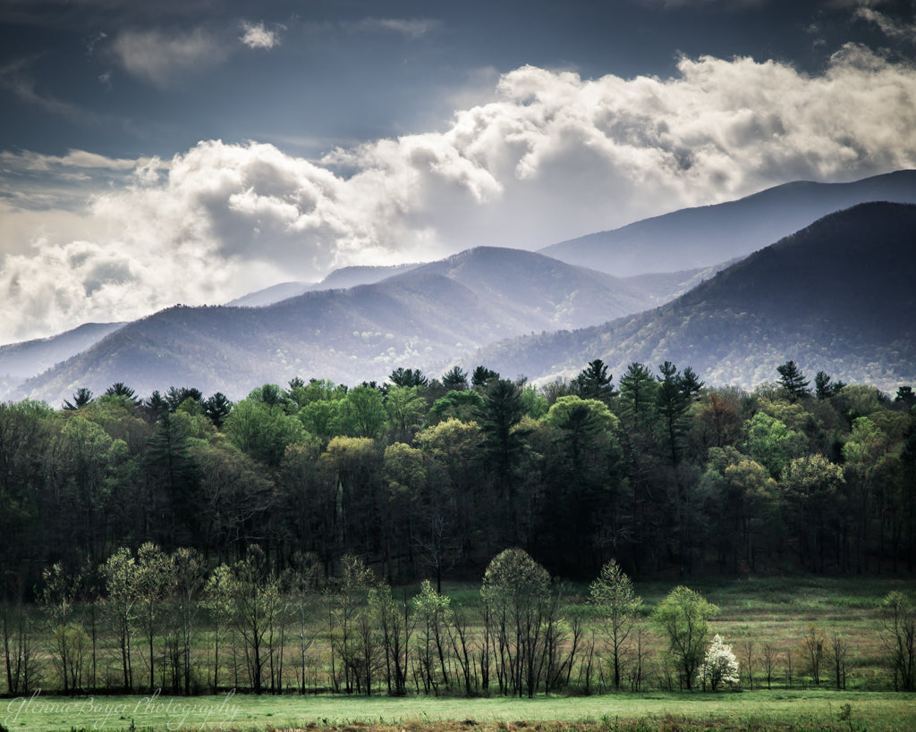 Spring landscape in the Smoky Mountains