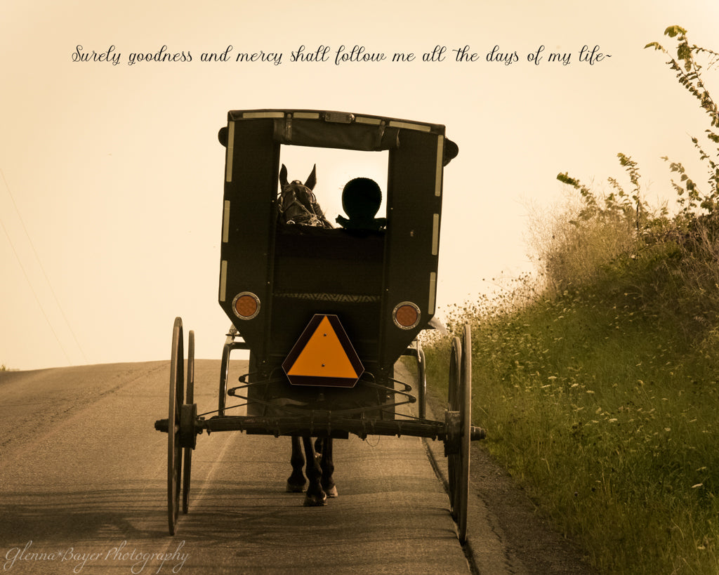 Rear Side of Amish Horse and Buggy Going Up Hill with Scripture Verse