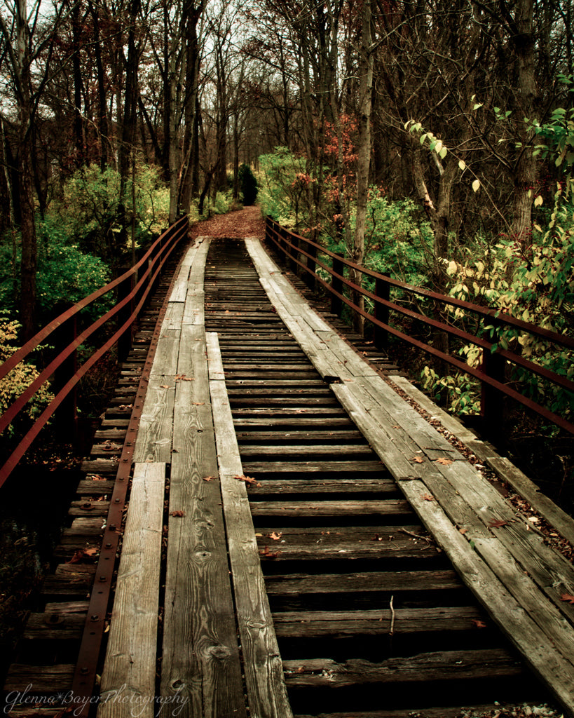 Old wooden bridge in autumn woods