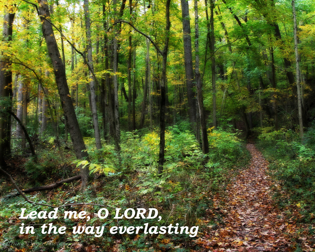 Path through autumn woods with scripture verse