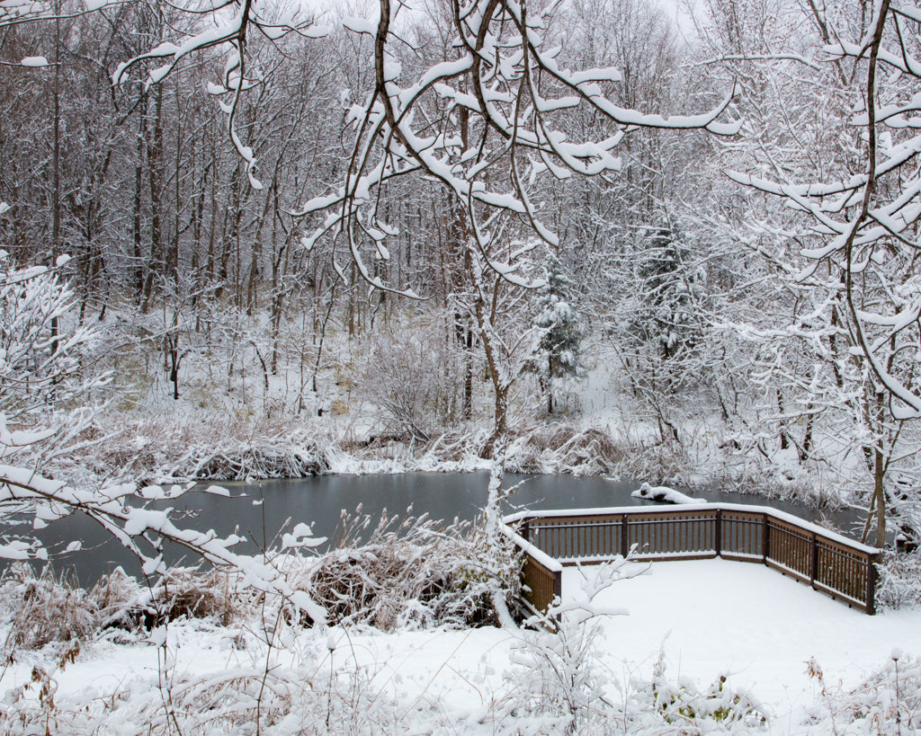 Pond surrounded by snow covered trees at Brukner Nature Center, Ohio