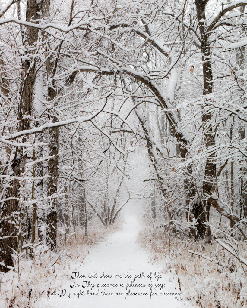 Trail through snow covered trees at Brukner Nature Center, Ohio with scripture verse.