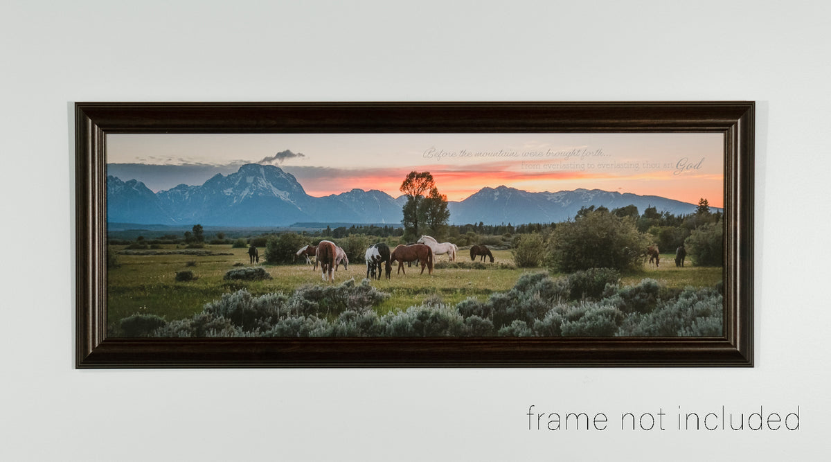 framed print of Horses grazing in pasture with Tetons in the distance during sunset